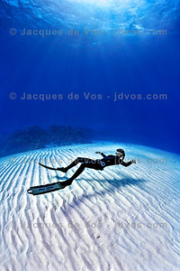 My Office...  Linda Paganelli over Eel Garden, Dahab - Egypt  Ikelite 50D Housing (8'' Dome Port) Ikelite DS-160 Strobes